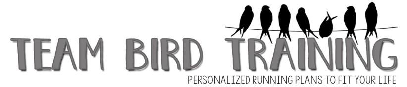 Image result for team bird training